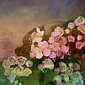 Bridal Memories by Shirley Sirois