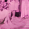 Bridal Pink By Jrr by First Star Art