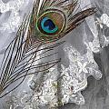 Bridal Veil by Joana Kruse