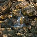 Bridalveil Creek I by Gene Norris