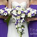 Bride And Bridesmaids With Wedding Bouquets by Lee Avison