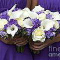 Bridesmaids With Wedding Bouquets by Lee Avison