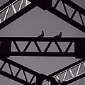 Bridge Abstract by Bob Orsillo