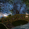 Bridge And Blue Tree by Susanne Baumann