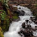 Lower Wahkeena Falls by Athena Mckinzie
