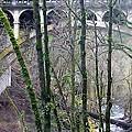 Bridge Arch Through The Trees by Susan Garren