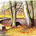 Bridge At Littlemill Glenmuick Scotland by Dai Wynn