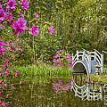 Bridge At Magnolia Plantation by Carrie Cranwill