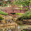 Bridge At Shelton Vineyards by Kerri Farley