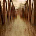 Bridge In Abstract by Margie Hurwich