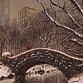 Bridge In Central Park by Tom Shropshire
