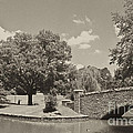 Bridge In Sepia Tones by Jill Lang