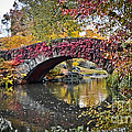 Bridge In The Fall by Stacey Granger