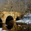 Bridge In Woods by William Jobes