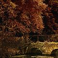 Bridge by Margie Hurwich