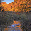 Bridge Mt And The Virgin River Zion Np by Tim Fitzharris