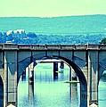 Bridge Of Arches by Tara Potts