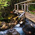 Bridge Over A Mountain Stream by Brandon Smith