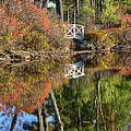 Bridge Over Fall Waters by Donna Doherty