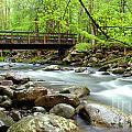 Bridge Over Little Pigeon River by Nancy Mueller