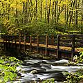 Bridge Over Oconaluftee by Eric Albright
