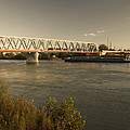 Bridge Over Rhein River by Miguel Winterpacht