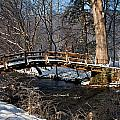 Bridge Over Snowy Valley Creek by Michael Porchik