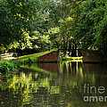 Bridge Over The Wey Navigation In Surrey by Louise Heusinkveld