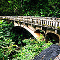 Bridge To Hana Maui by Carlene Salazar
