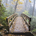 Bridge To Rough Ridge 07 by Jim Dollar