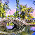 Bridges At Liliuokalani Park Hilo by Dominic Piperata