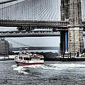 Bridges Of New York by Nancy De Flon