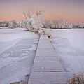 Bridging The Cold by Michael Van Beber