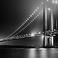 Bridging Verrazano Narrows by Mihai Andritoiu