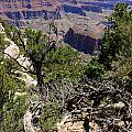Bright Angel Point View by Christiane Schulze Art And Photography