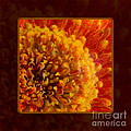 Bright Budding And Golden Abstract Flower Painting by Omaste Witkowski