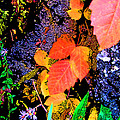 Bright Colorful Leaves Vertical by Minding My  Visions by Adri and Ray