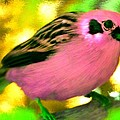 Bright Pink Finch by Bruce Nutting