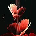 Bright Red by Anastasiya Malakhova