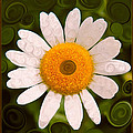 Bright Yellow And White Daisy Flower Abstract by Omaste Witkowski