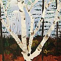 Brightest Birch by Suzanne  Marie Leclair