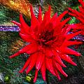 Brilliance In An Autumn Garden - Red Dahlia by Marie Jamieson