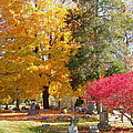 Brilliant Colors In The Cemetery  by Susan Wyman