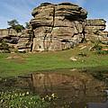 Brimham Rocks Reflection by John Topman