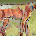 Brindle Greyhound by Carol Jo Smidt