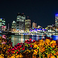 Brisbane by D White