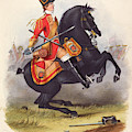 Britain  A Member Of The Second Dragoon by Mary Evans Picture Library