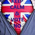 British Businessman Votes No by Antony McAulay