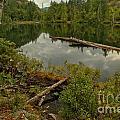 British Columbia Starvation Lake by Adam Jewell