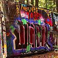 British Columbia Train Wreck Graffiti by Adam Jewell